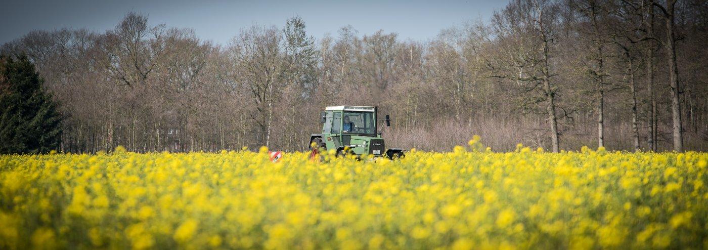 Representative picture for smart agriculture